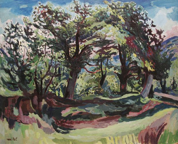 Les chênes en été à Malataverne